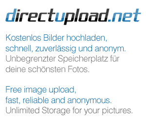 http://s4.directupload.net/images/080530/temp/g8hnqyif.png